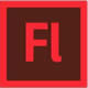 Adobe Flash classes, training course more details